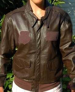 original USAF A-2 flight jacket with Wolfhounds back painting ...