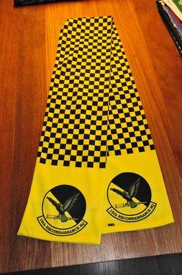 15th Reconnaissance Squadron pilot scarve