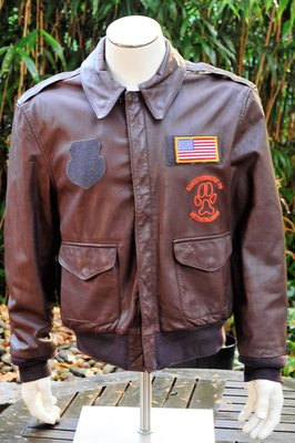 leather USAF A-2 flight jacket with Wolfhounds embroidery 32 TFS CNA Amsterdam Size 44 Large
