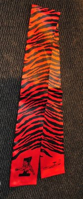 1st Squadron pilot scarve Awacs