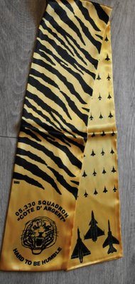 05 330 Squadron Cote D'Argent pilot scarve Hard To Be Humble
